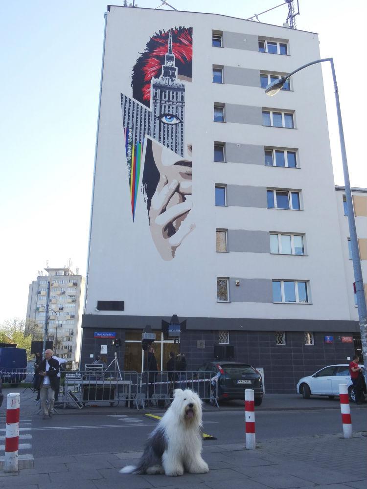 Mural Dawida Bowiego wWarszawie