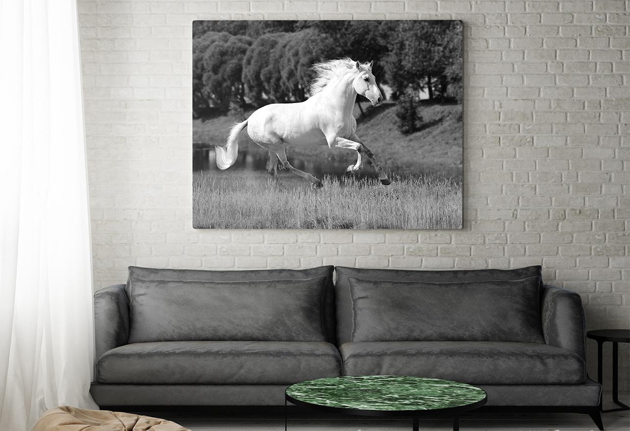 Czarno-białe fotografie